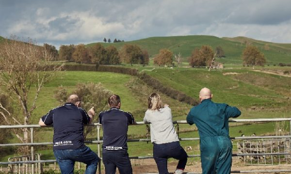 Life on the land: Next-gen accounting for the modern farmer