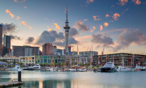NZ Election 2020: Advisors to small business call for certainty