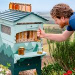Flow Hive and Cedar Anderson